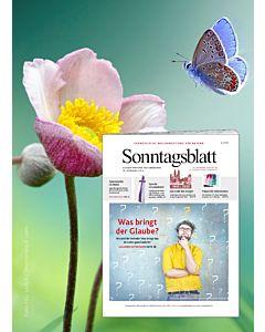 Sonntagsblatt Fastenabo